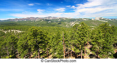 Black Hills National Forest Panoramic - Mount Rushmore...