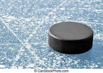hockey puck  - black hockey puck on ice rink