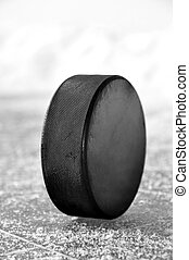 hockey puck  - black hockey puck on ice rink