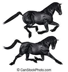 Black horse - Digitally rendered image of a black horse on...