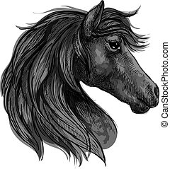 Black horse head profile portrait
