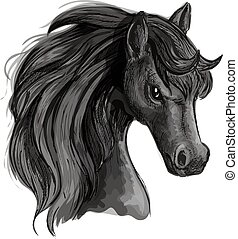 Black horse head sketch portrait