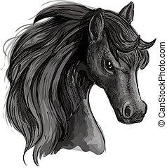 Black horse head sketch portrait