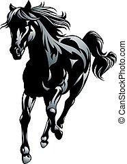 black horse isolated on the white background