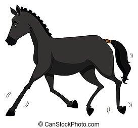 Black horse running alone