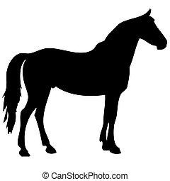 black horse silhouette 2 - black horse silhouette