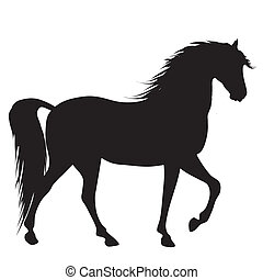 black horse silhouette  - silhouette of a nice black horse