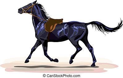 black horse trotting with saddle