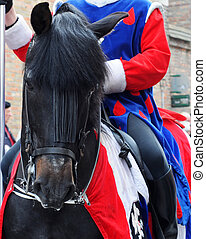 Black horse with costumed man