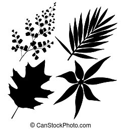 black illustrations of leaves on white background