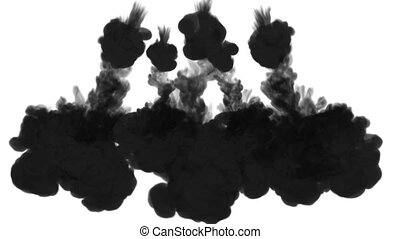 black Ink trickle dissolves in water in slow motion isolated...