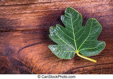 black jack figs leaf looks like maple leaf on dark tone teak wooden