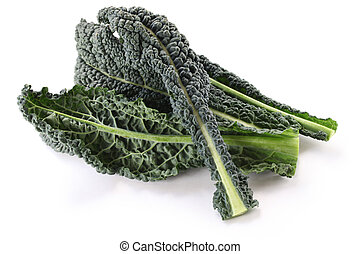 black kale - italian kale, tuscan kale, lacinato