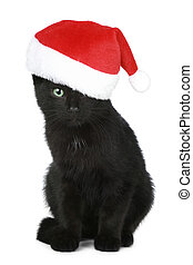 Black kitten in a Christmas hat