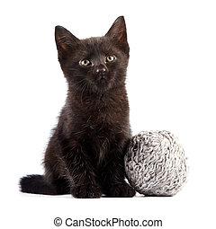 Black kitten with a woolen ball