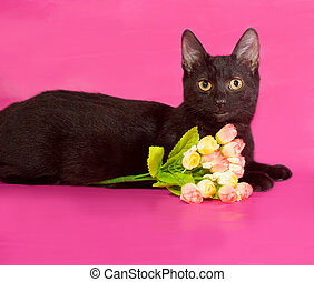 Black kitten with bouquet of flowers lying on pink
