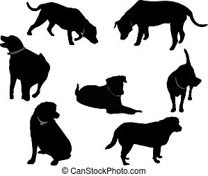 Group of Black Labrador silhouettes, over white and isolated for many usages.