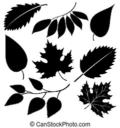 Black leaves silhouettes isolated on white