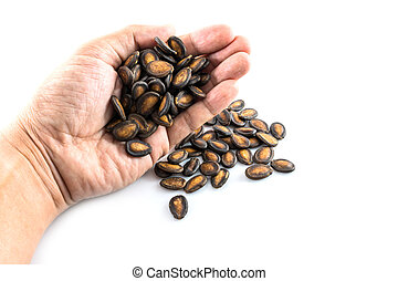 Black Melon Seeds in hand