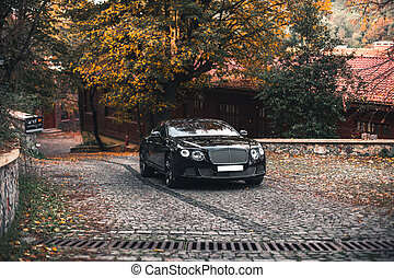 Black modern car in the autumn park