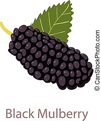 Black mulberry icon, isometric 3d style - Black mulberry...