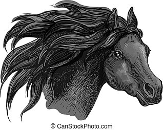 Black mustang horse sketch portrait