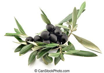 Black olives with olive leaves surrounded by white...