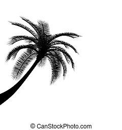 Black on white palm tree on white background