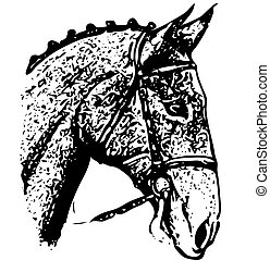 Black ornate-silhouette Head of Horse, drawing on white background,