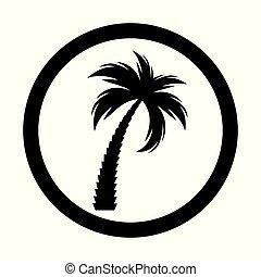 Black palm tree silhouette. Vector Illustration