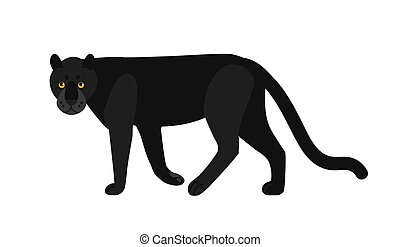 Black panther isolated on white background. Stunning wild exotic carnivorous animal. Graceful large wild cat or felid. Melanistic leopard or jaguar. Colored vector illustration in flat cartoon style.