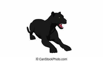 Black panther lying down on a white background