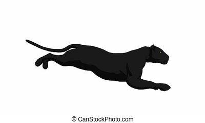 Black Panther Running - Black panther running on a white ...