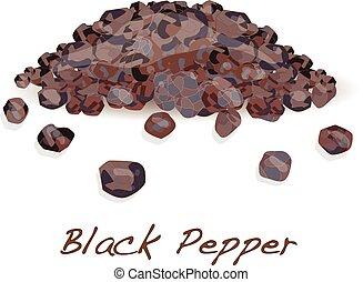 Black pepper corns vector isolated