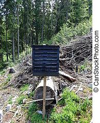 Forest preservation, pheromone trap for bark beetle - Black...