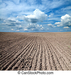 black ploughed field