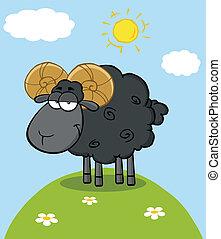 Black Ram Sheep Character On A Hill