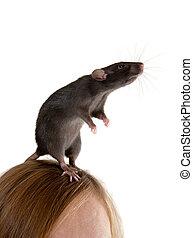 on a head