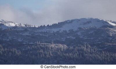 Black Raven Flying To Snowy Hills - A raven flies toward...