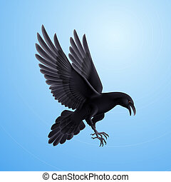 Aggressive black raven. Illustration on blue sky background