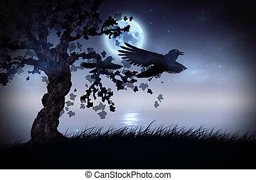 Black ravens at night - Illustration of black ravens and...