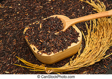 Black rice in wooden bowl and paddy rice,isolate on black