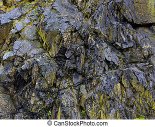 Black rock texture and green moss