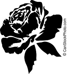 Black roses - silhouette of black rose