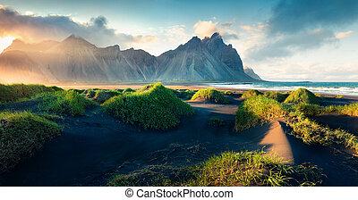 Black sand dunes on the Stokksnes headland on southeastern...
