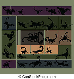 Black scorpion set on colorful back