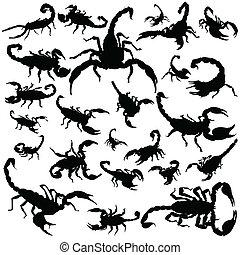 Black scorpion silhouettes on white