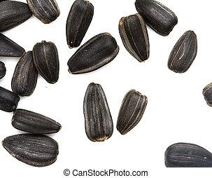 black seeds on a white background. macro