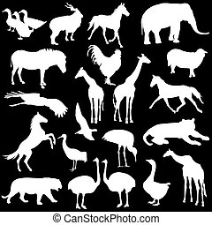 Black set silhouettes  zoo animals collection on white background. Vector illustration.
