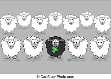 Black sheep surrounded by white sheep